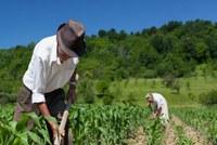 Imposto Rural